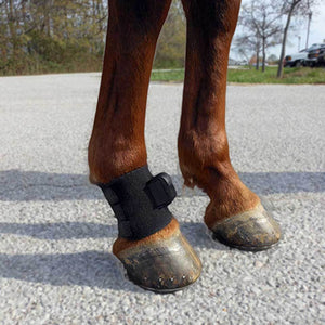 Equinosis Sensor Attachment Accessories Pastern Wrap