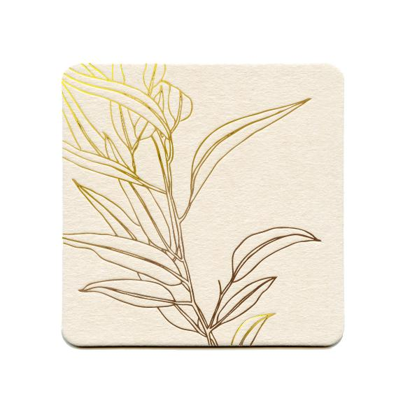 Eucalyptus Kiss the Paper Coasters