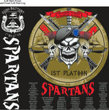 PLATOON SHIRTS (2nd generation print) ECHO 1st 31st SPARTANS NOV 2016