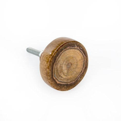 Wood and Resin Slice Knob - Brown