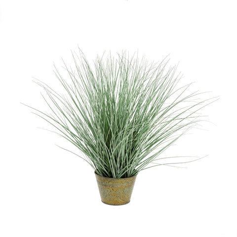 Tin Potted Grass - Seaside Green