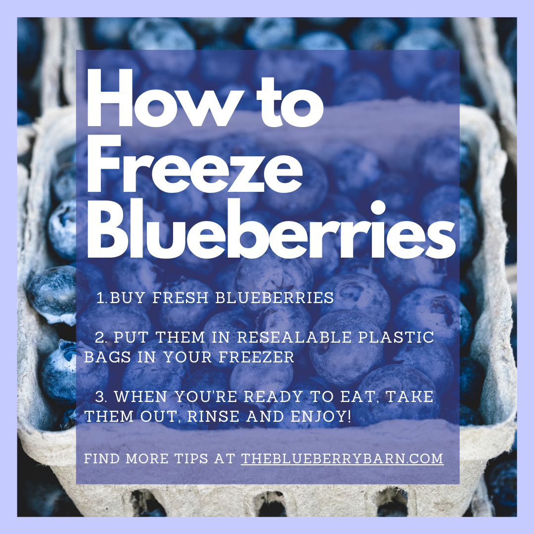 3 Easy Steps to Freeze Blueberries