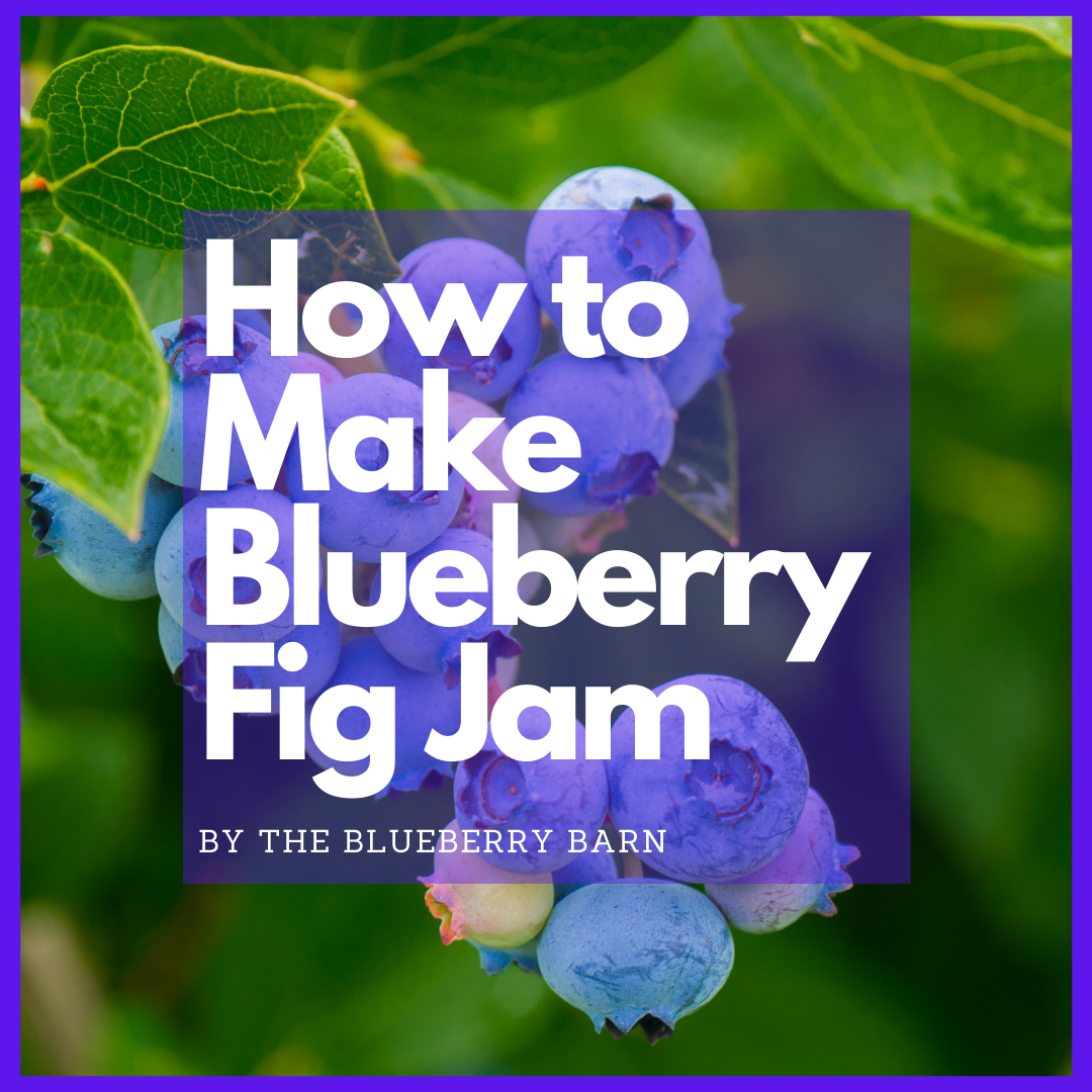 read how to make blueberry fig jam