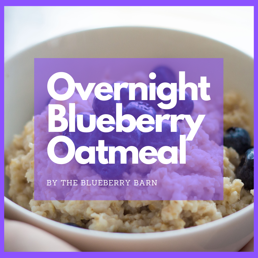 recipe for easy overnight blueberry oatmeal