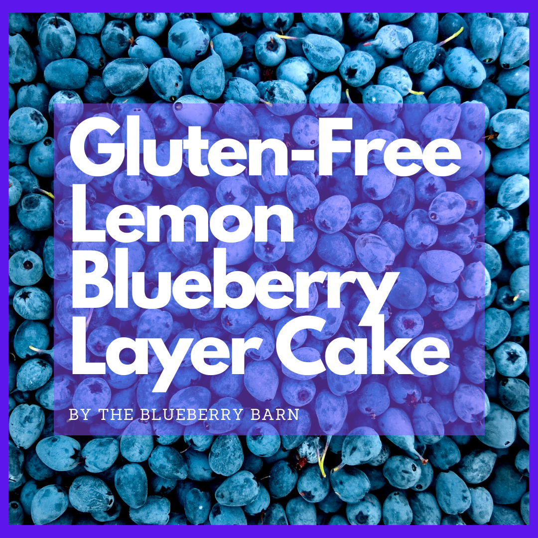 recipe for gluten free blueberry layer cake