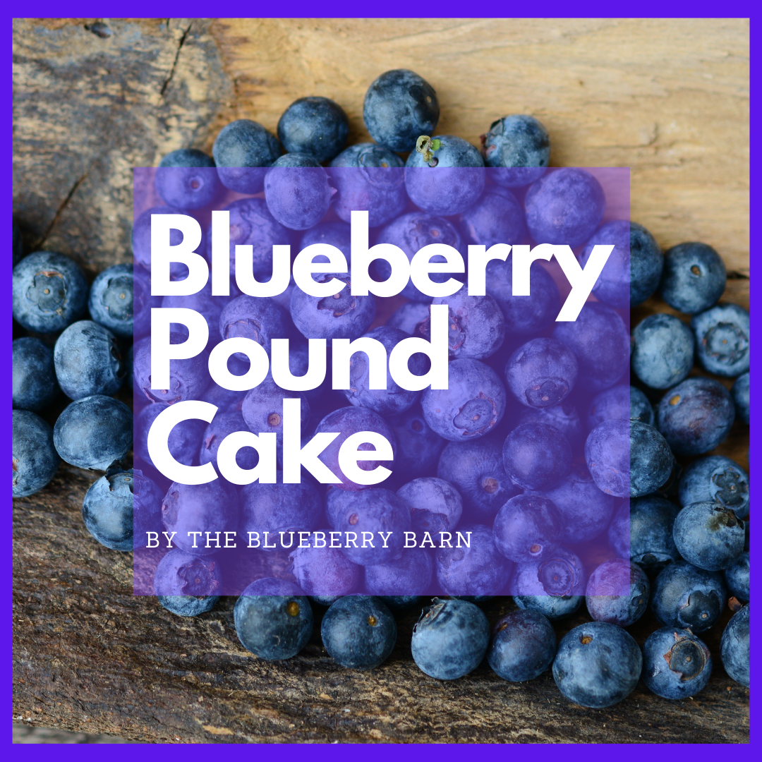 recipe for homemade blueberry pound cake