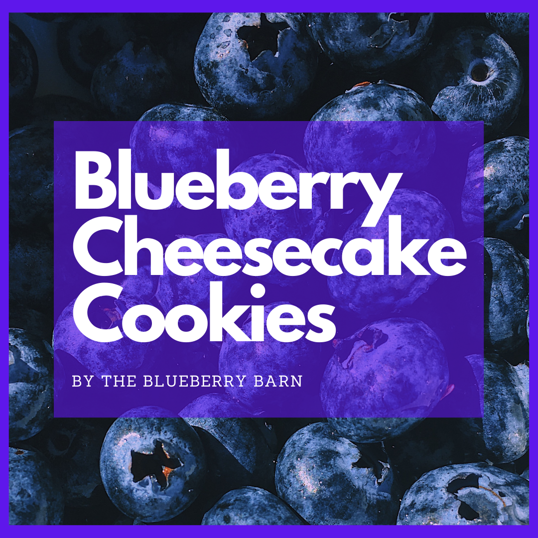 recipe for easy blueberry cookies taste like cheesecake
