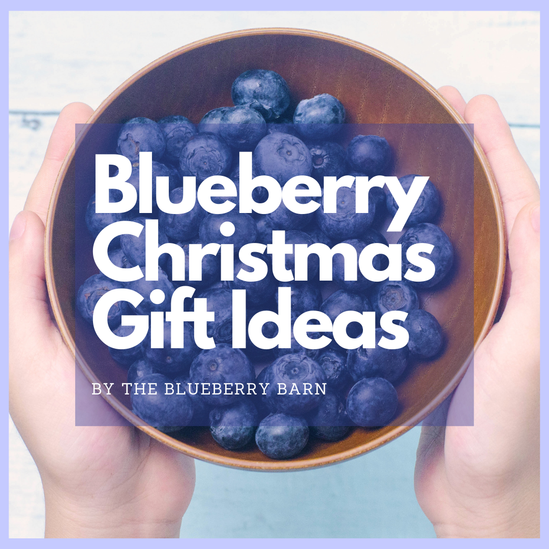 blueberry Christmas gift ideas. article by the blueberry barn