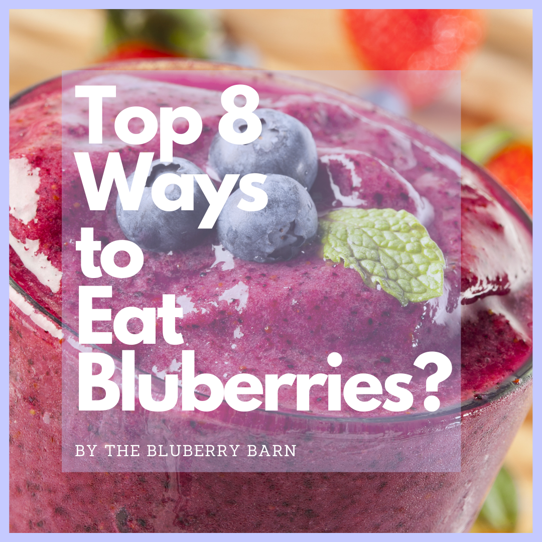 top 8 best ways to eat blueberries by The Blueberry Barn