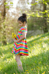 Mia Dress - Rainbow