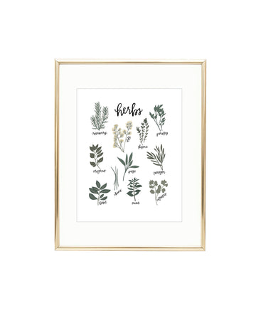 Garden Herbs Illustrated Art Print