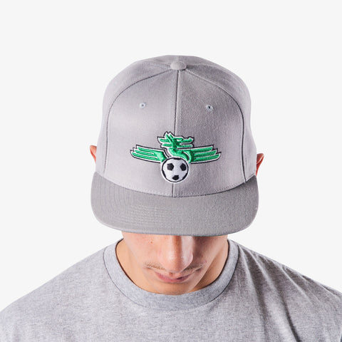 Dragons FC - Gray Logo Snapback