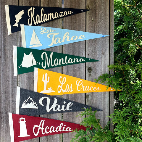 products/Vacation_Pennants_6_colors_on_fence_SQ.jpg