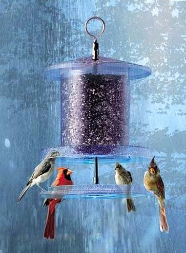 Bird Feeder Keeps Seed Dry