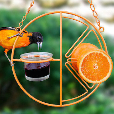 Fruit & Jelly Feeders for Orioles, Mealworm Feeders too