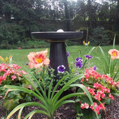 Blue-pedestal-birdbath-cutomer-photo