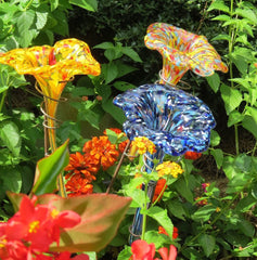 Glass Butterfly Feeders