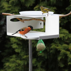 Mod Bird Bath-Bird Feeder