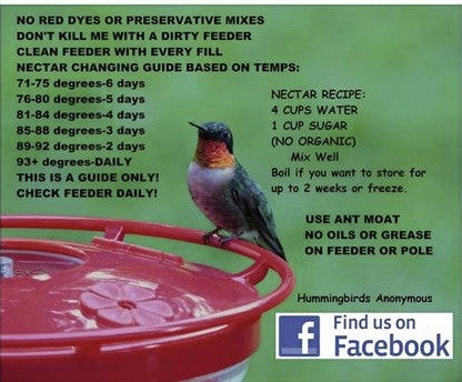 Hummingbird Nectar Guide and Temperature