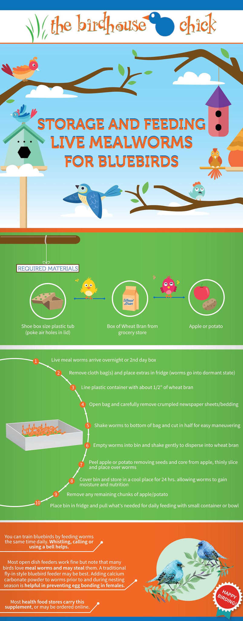 Handling and Storing Live Mealworms for Bluebirds