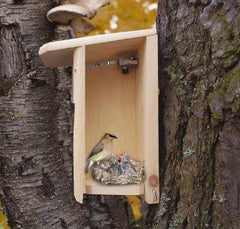 Nature Show Birdhouse with Camera