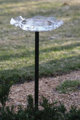 Acrylic Pole-Mounted Bird Bath by BirdsChoice