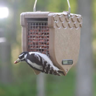 Recycled Shelled Peanut Feeder by BirdsChoice