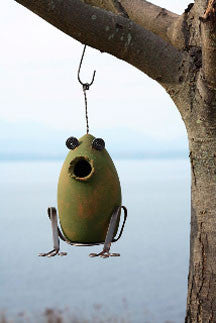 Eco Friendly Frog Birdhouse