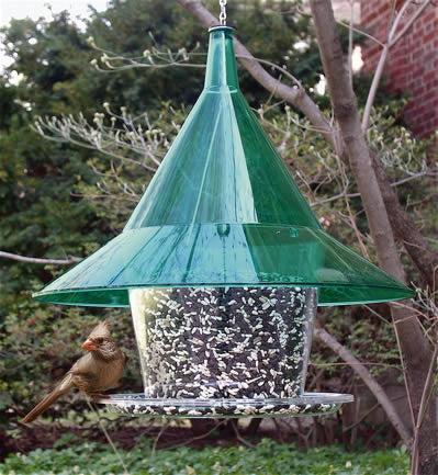 Sky Cafe Squirrel Proof Bird Feeder By Arundale The