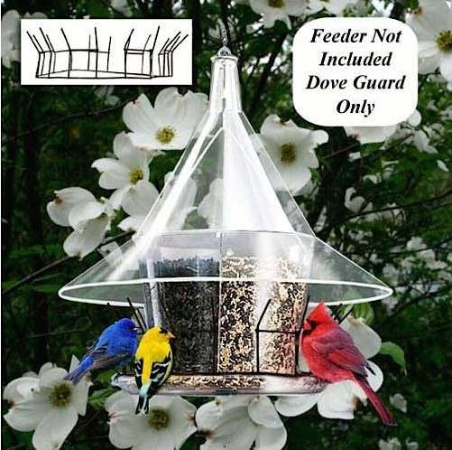 Dove Guard For Sky Cafe Feeder By Arundale The Birdhouse