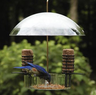 Super Dome Bird Feeder