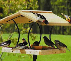 Cedar and Wrought Iron Fly-Thru Bird Feeder by BirdsChoice
