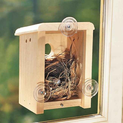 Window View Birdhouse Kit