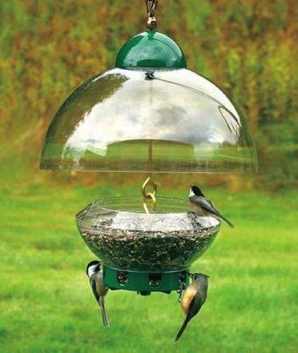 Big Top Squirrel Proof Bird Feeder