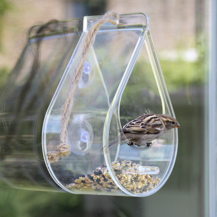 window bird feeder by using tough suction cups of coffee in addition to seed products pan