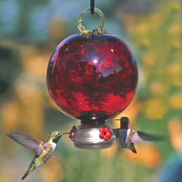 Ruby Red Dew Drop Hummingbird Feeder Gift Set Parasol