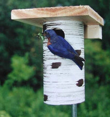 Gilbertson Nest Box-NABS Approved Bluebird House