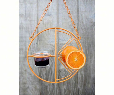 Clementine Oriole Feeder for Fruit and jelly