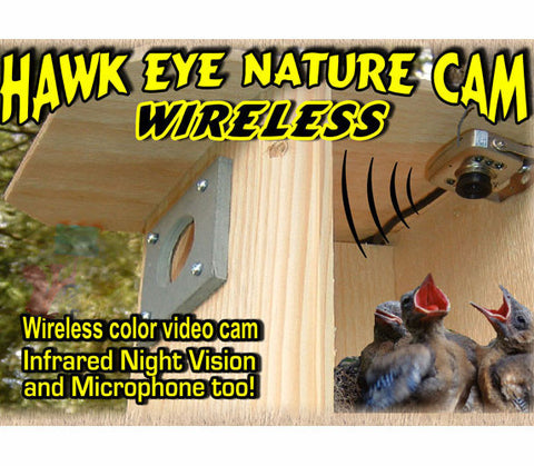 Hawk-Eye Wireless Spy Camera