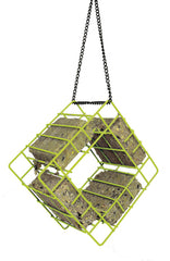 Suet Quad Bird Feeder-Lime