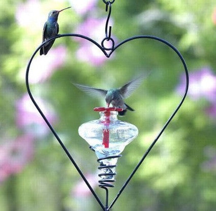 Mini-Blossom Heart Hummingbird Feeder