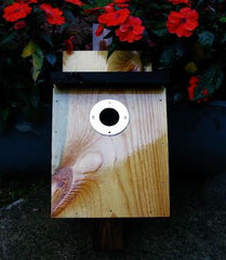 Traditional Nest Box with Brass Hardware