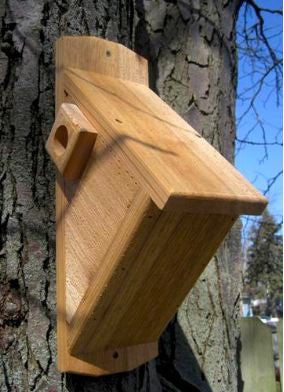 Cedar Side Entry Birdhouse for Nuthatches, Downys & More