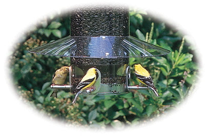 Weather Guard for Classic Pole Mount Feeder