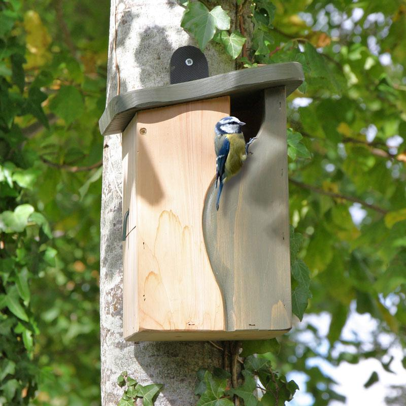 Natural Entry Wood Birdhouse