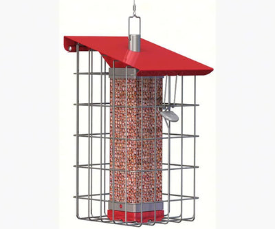 Nuttery Squirrel-Proof Peanut Feeder