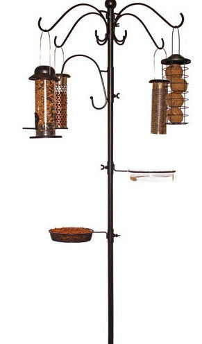 Complete Dining Station with 4 Bird Feeders