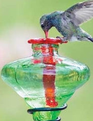 Mini-Blossom Glass Hummingbird Feeder-Green