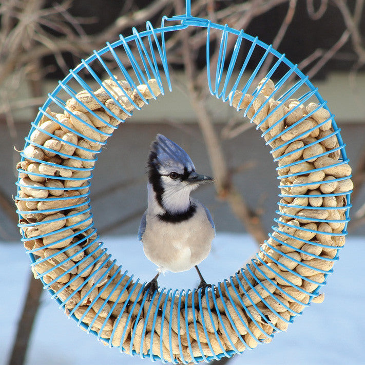 Whole Peanut Wreath Feeder