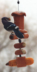 Jay at Pippin Suet Feeder